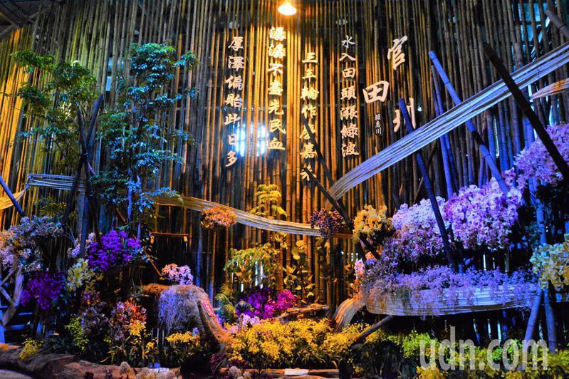 台灣國際蘭展今年以百年豐饒為主題,今天原是開展變撤展。記者吳淑玲/攝影