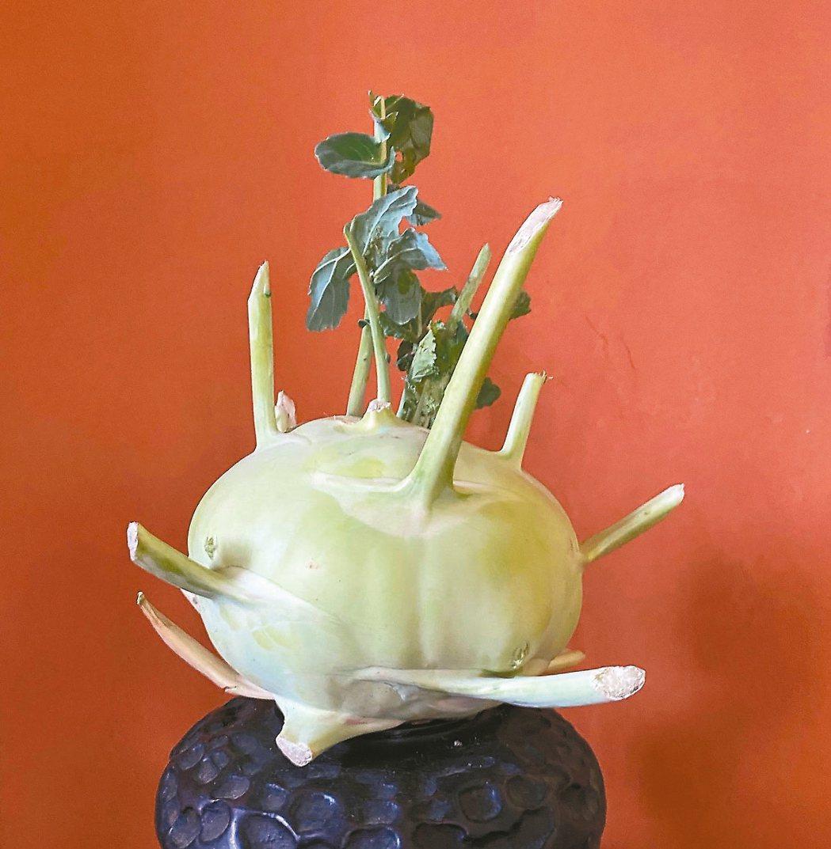 窩在廚房除了作菜,還可以把眼前的各色蔬果畫下,獲得紓壓療癒的樂趣。 圖/朱慧芳