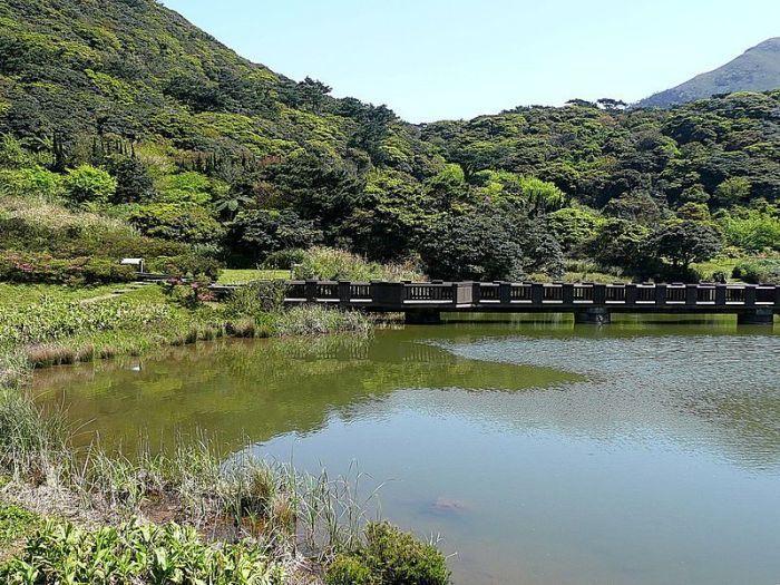 大屯自然公園。 圖/Wikimedia