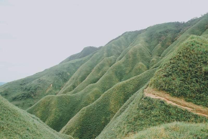 「樂遊抹茶山」行程開跑。圖/礁溪老爺提供