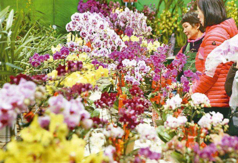 國內的花卉外銷市場以外銷日本為最大宗。 聯合報系資料照片