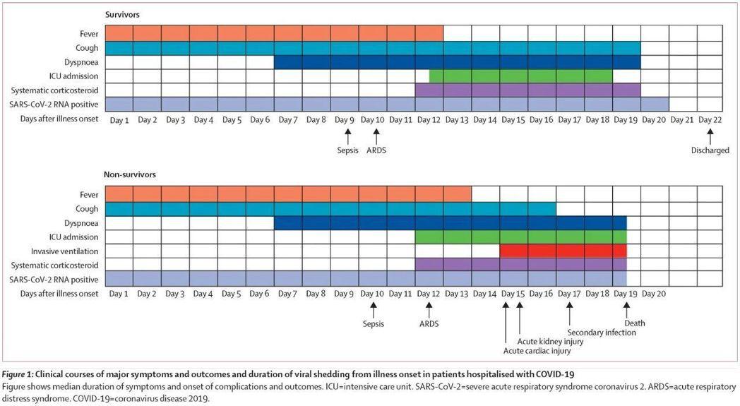 陸學者發布新冠致死危險因素,病毒繁殖時間可達37天。圖/The Lancet