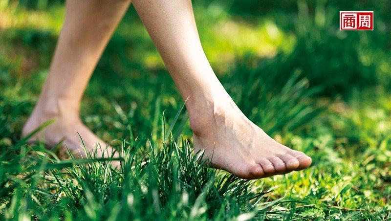 走入山林,來場森林療癒,森林調養你的身體,也撫慰人心。 (攝影者.劉煜仕)