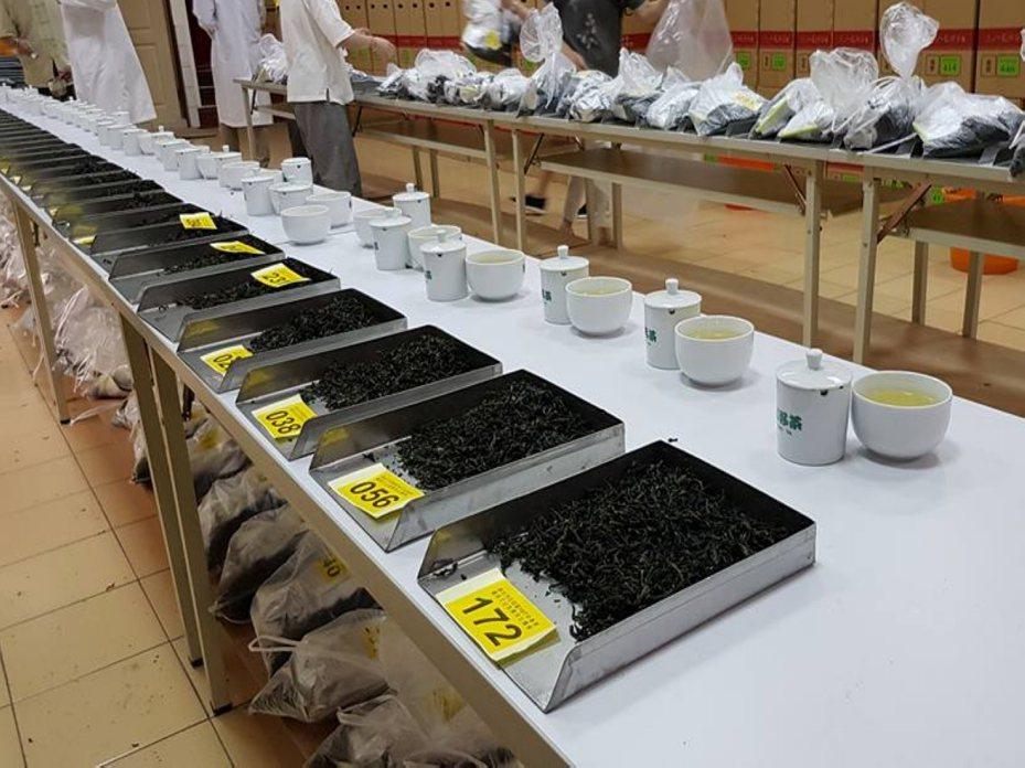 新北好茶石碇區春季優良文山包種茶比賽,有興趣參加的茶農需在3月20日前完成報名。 圖/大新店有線電視提供