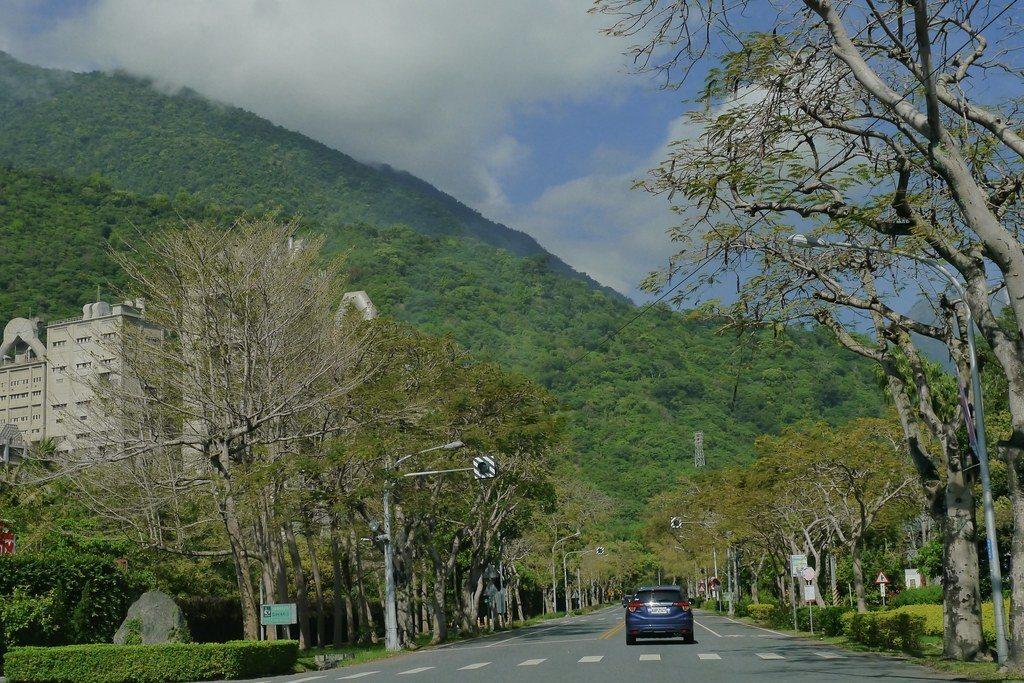亞洲水泥花蓮新城廠的對面,就是生態園區入口。