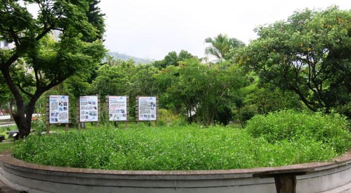 2014年7月,amy拍攝珍藏影像紀錄(亞泥生態園區旁台九線上路邊)
