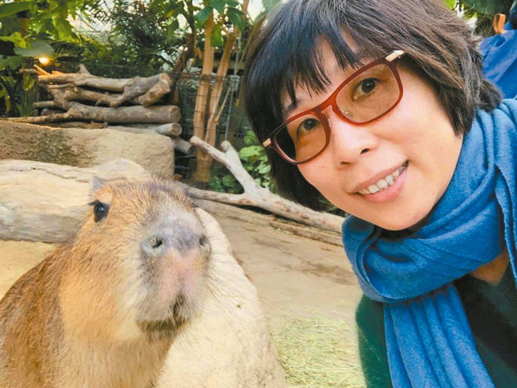 我在日本神戶動物王國與水豚君一起笑開懷! 圖/潘嘉慧提供