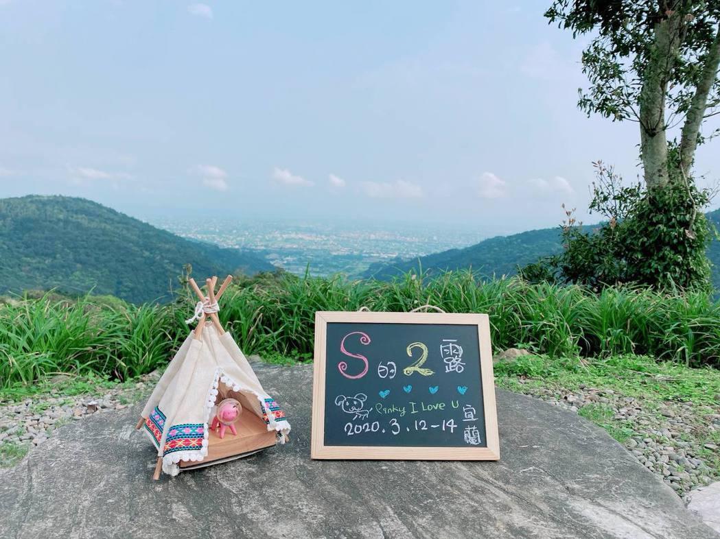 Pinky的新帳篷讓網友直呼有洋蔥。圖/摘自臉書
