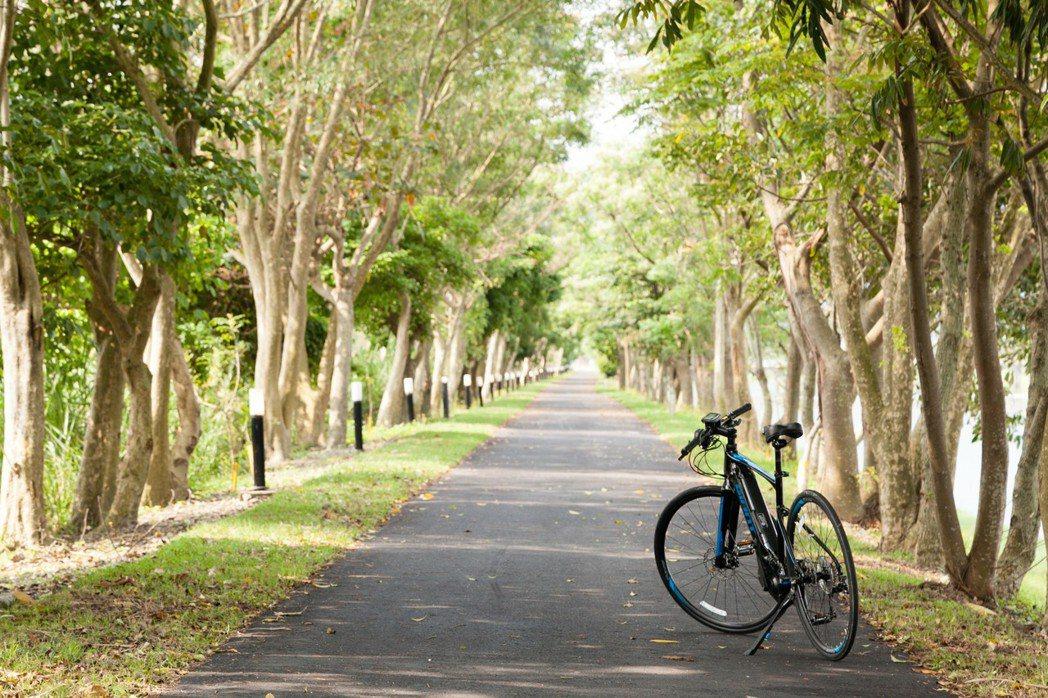 捷安特旅行社與馬修嚴選推出自行車新生活提案。 捷安特旅行社/提供