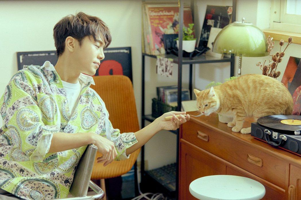 韋禮安和貓拍攝MV時失去光環,自嘲變成臨演。圖/The Orchard提供