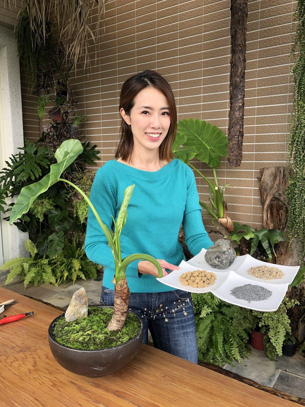黃瑄學做造景盆栽。圖/民視提供