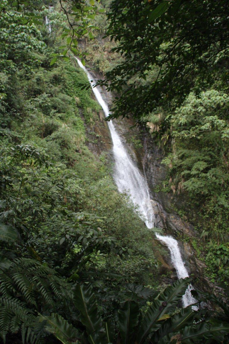花蓮縣壽豐鄉樹湖櫻花步道,結合瀑布,相當適合戶外踏青。 圖/王燕華 攝影