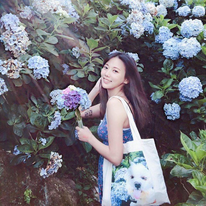 ▲陽明山花季-高家繡球花田。(圖/攝影者:yellowweily授權提供, Instagram)