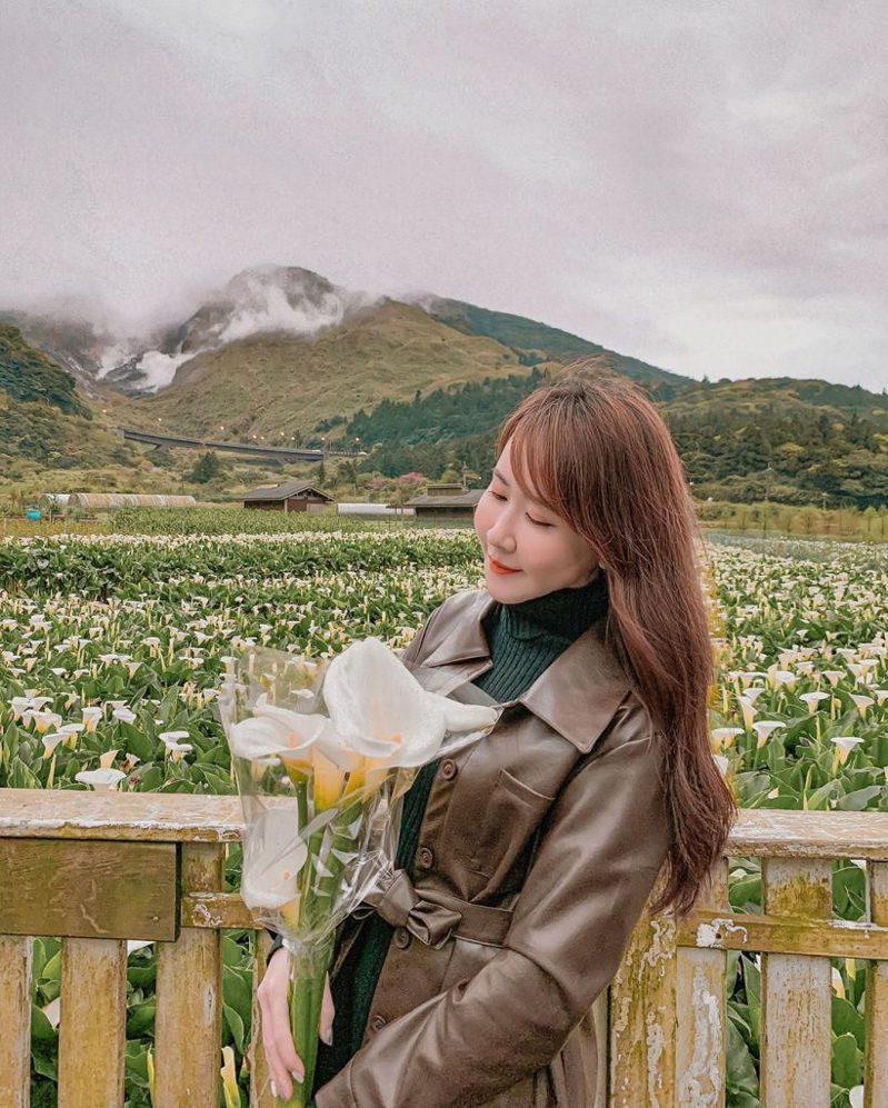 ▲陽明山花季-財福海芋田。(圖/攝影者:yulissa_hsieh授權提供, Instagram)