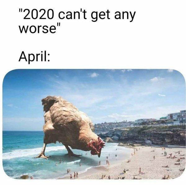 """""""2020不會更糟了"""" """"四月: """" 圖:Reddit@u/Car..."""