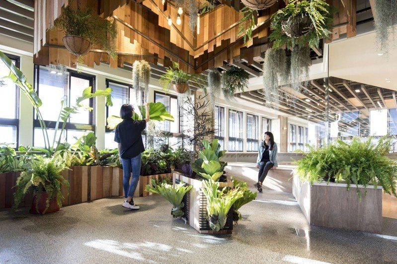 全新的「西灣學院創意實踐基地」讓教室不再只是教室,而是「生活實驗場」。圖/中山大學提供