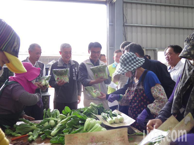 農委會主委陳吉仲隨後也轉往八德蔬菜產銷班第三班了解供貨、包裝情形。記者張裕珍/攝影