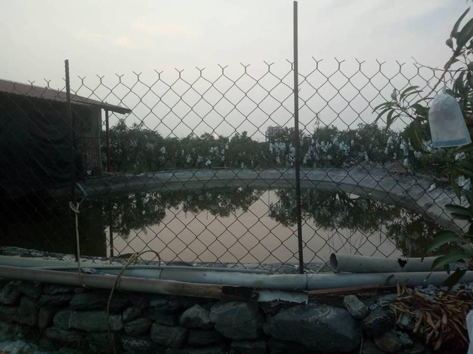屏東縣佳冬鄉發生2名幼童溺水事件,2名6歲、4歲小男童跟著媽媽一起去田裡工作時,疑在昌隆村靶場附近魚塭玩耍時,不慎掉入溺水,消防隊據報到場救起2人,送到枋寮醫院時已無生命跡象。記者潘欣中/翻攝