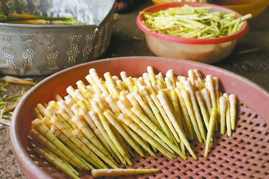 最近是花蓮箭筍產季,營養師建議,若有腸胃道疾病,淺嘗即止,以免造成腸胃負擔。 記...
