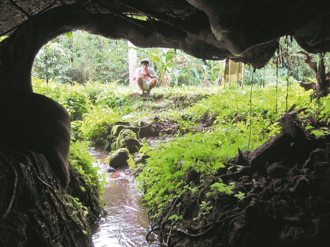 曾志偉在峇里島的基地。 攝影/陳立凱    圖/自然洋行提供