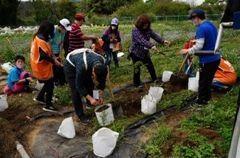 打造莊園成為石門水庫的後花園植栽活動。 肯納莊園/提供