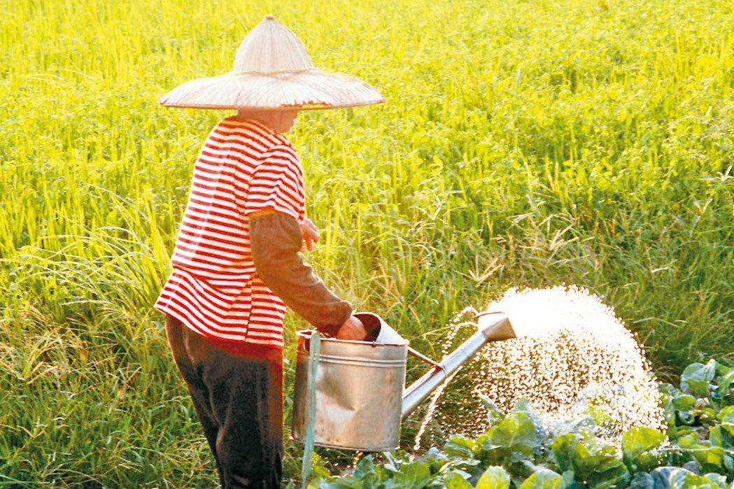 農委會去年推出農業大補貼政策,補貼經費多來自各項農業特別收入基金。 本報資料照片