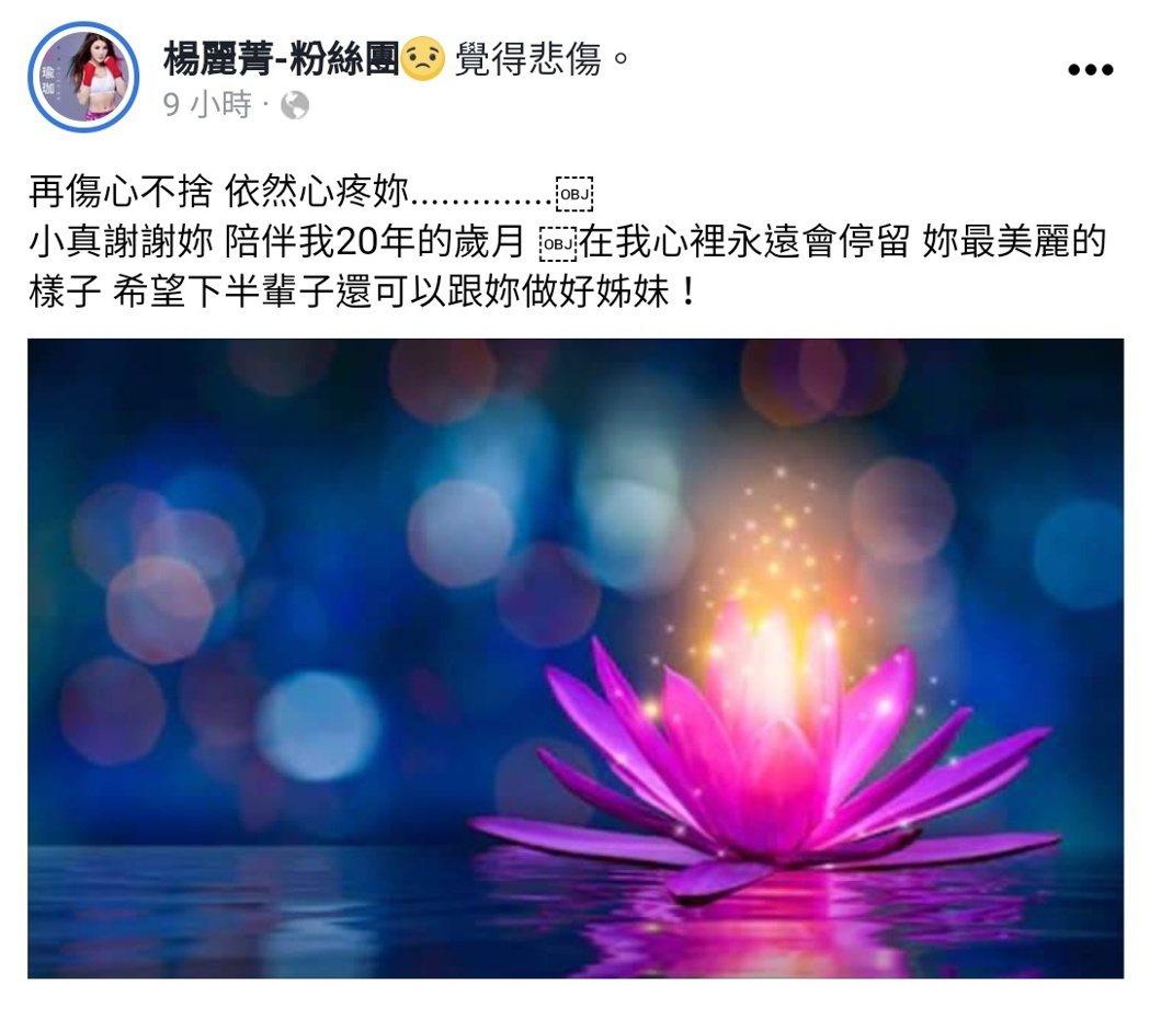楊麗菁發文哀悼劉真。 圖/擷自楊麗菁臉書