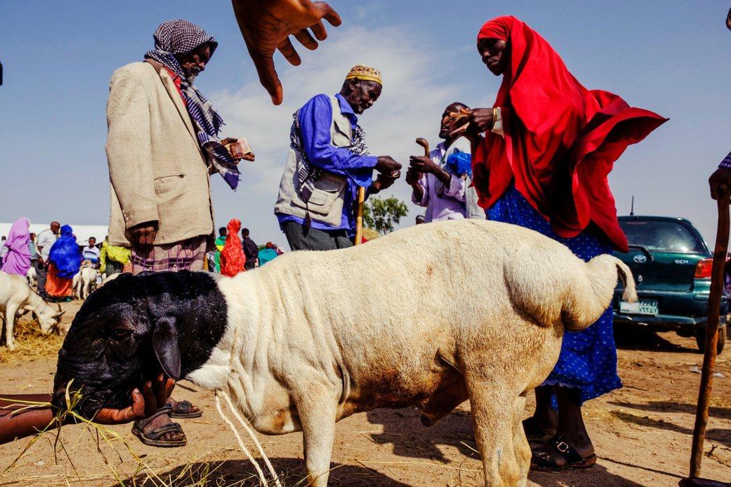 位於非洲之角的索馬利蘭,相較於「祖國」索馬利亞的無政府狀態,國家運作正常,但是缺...