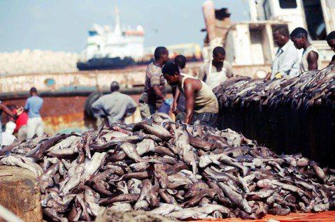 索馬利蘭遊走於「強國打架」的夾縫間,要如何下好「獨立」棋局,而不任人魚肉?圖為示...