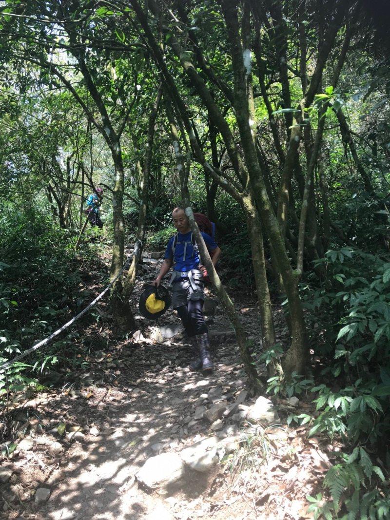 登山健行考驗體力與耐力,下山容易引發膝蓋關節疼痛,特別考驗上年紀的人。 圖/徐白...