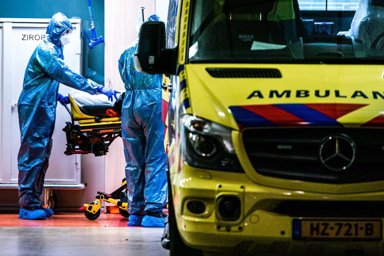 荷蘭暴增逾千例新冠肺炎確診 累積至7431例