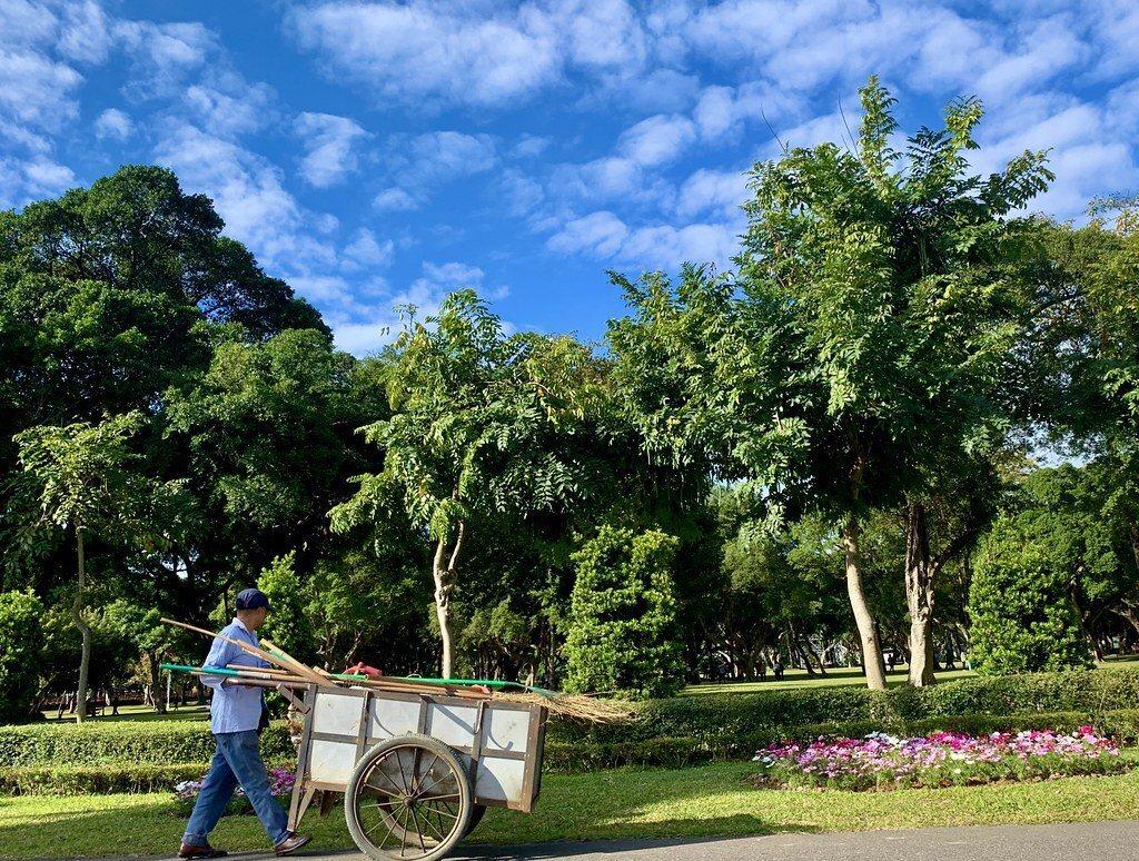 清潔人員,每天早晨辛苦的維護清掃落葉,維護青年公園的環境乾淨。