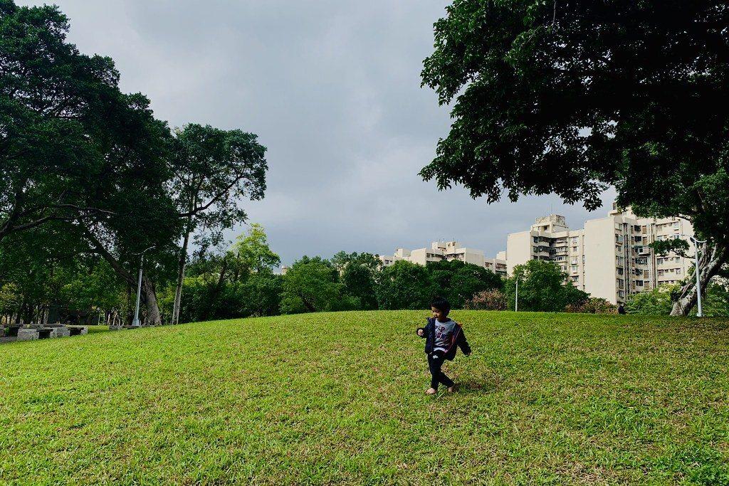 草坪跑跑跳跳放電快樂的孩童