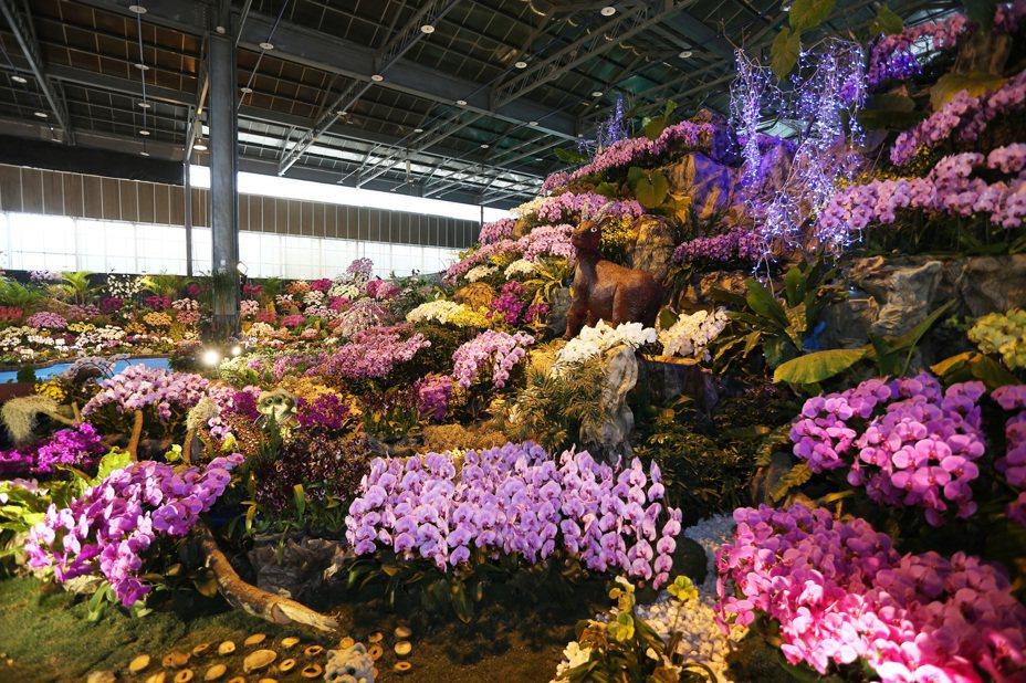 我國花卉外銷市場以日本為最大宗,但空運運費從原來的每公斤30元,飆漲到每公斤近百元。本報資料照片