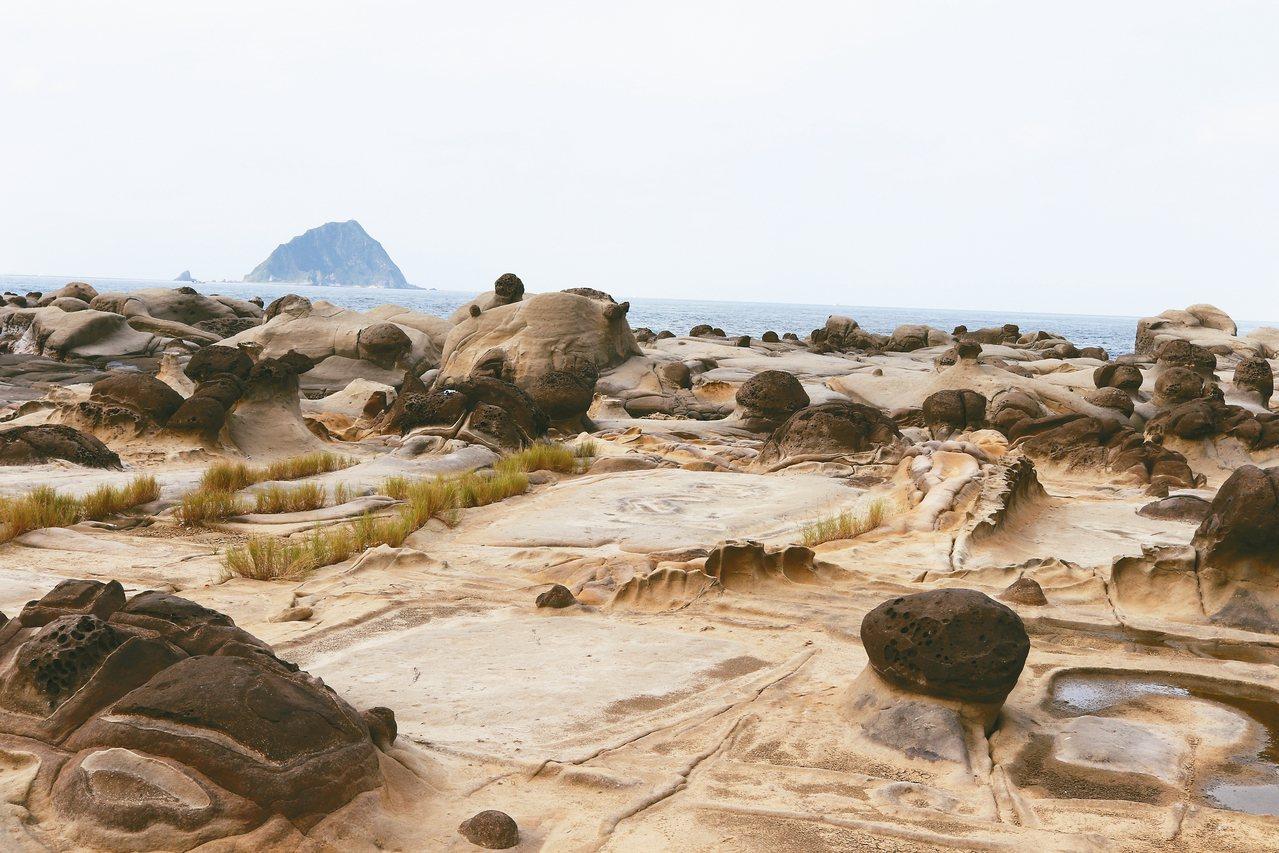 基隆和平島奇岩。 圖/洪維琪提供