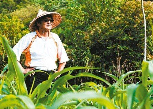 政大校長郭明政與他種植的玉米。 圖/胡經周攝影