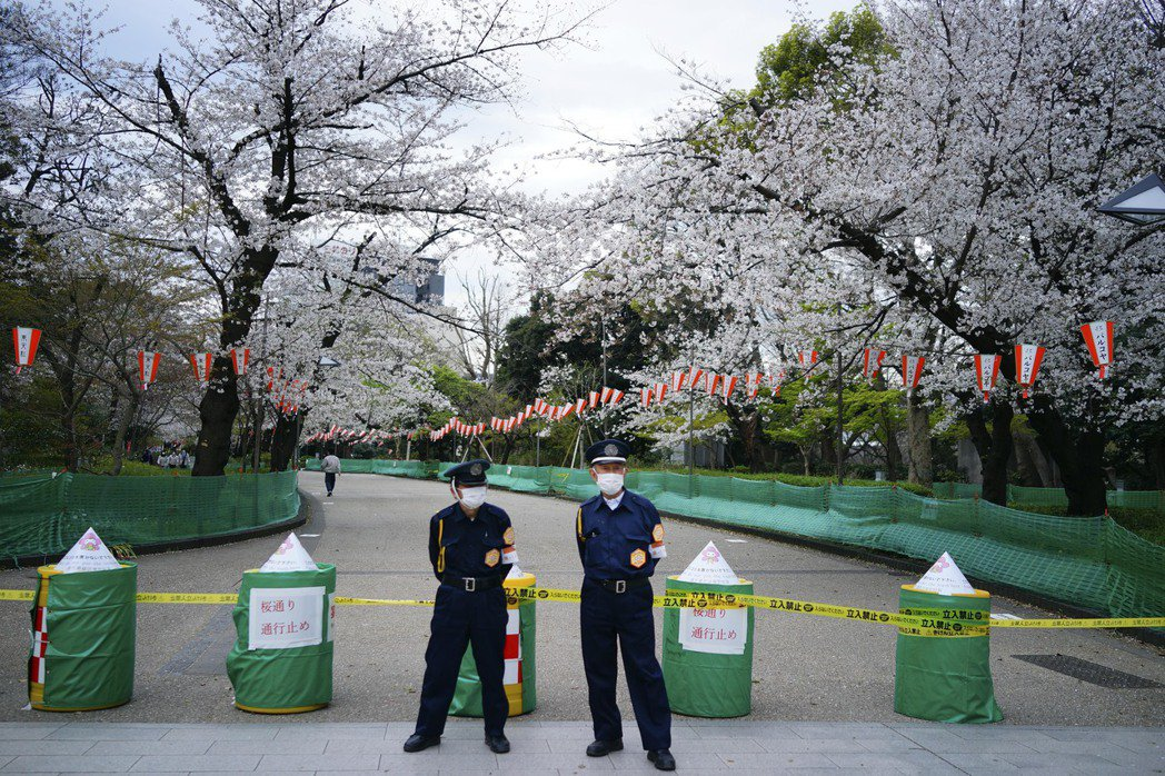 雙重標準?東京籲民眾宅在家,安倍老婆卻聚眾賞櫻。 美聯社