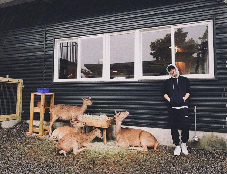 張洛偍到斑比山丘體驗被鹿群圍堵搶食的快感。圖/周子娛樂提供