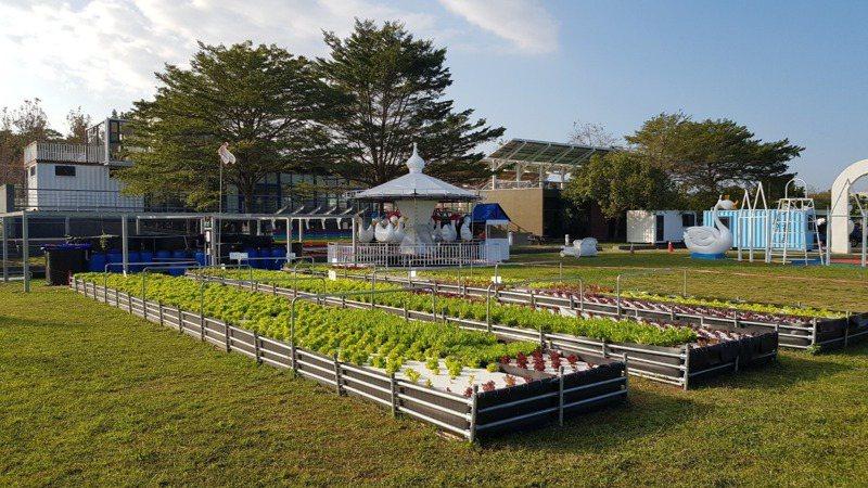 魚菜共生系統為園內特色之一。圖/FB「鵝媽媽 鵝童樂園」