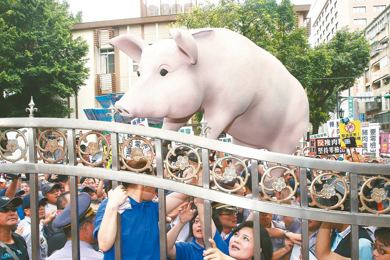 美國一直希望台灣進一步開放含瘦肉精美豬及部分牛肉產品進口,台灣總統蔡英文連任後,預計美方對蔡政府解決美豬牛問題的期待更高。圖/聯合報系資料照片