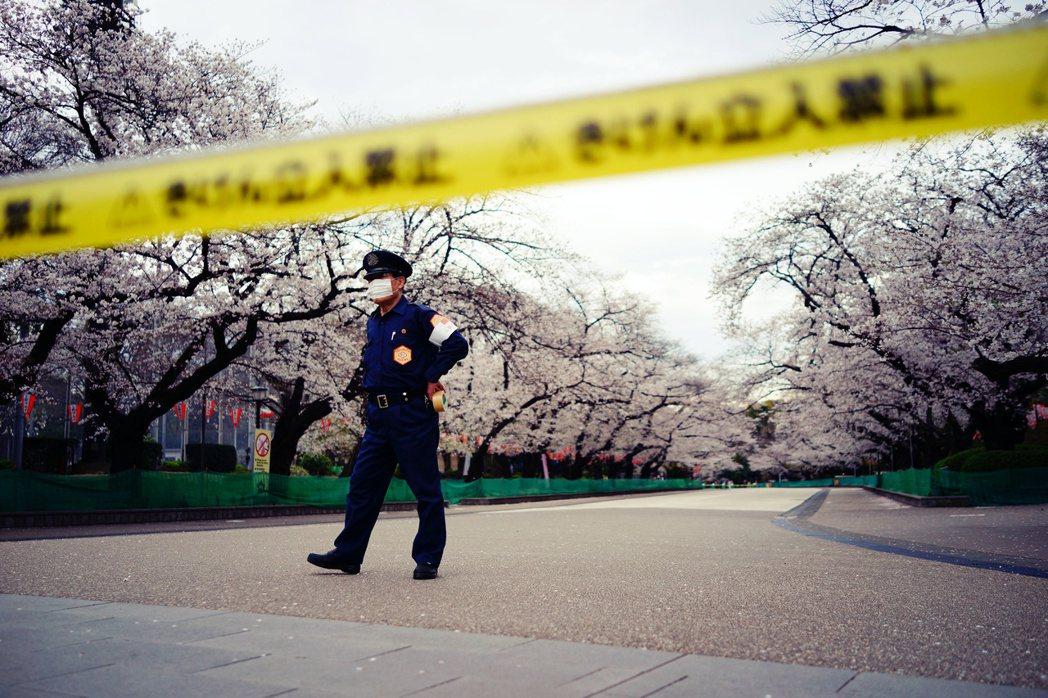 武漢肺炎打亂了原本美好的賞櫻行程,擔心會因大規模聚會,導致更嚴重的群聚社區感染。...