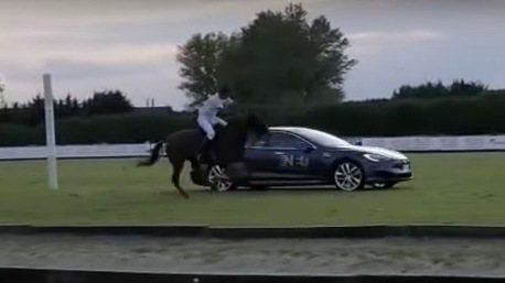 影/1匹馬力 VS 590匹馬力 馬匹和Tesla Model S的直線折返對決