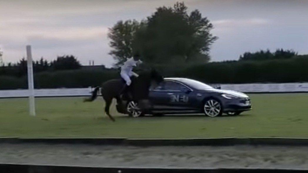 Tesla Model S對決駿馬。 摘自影片
