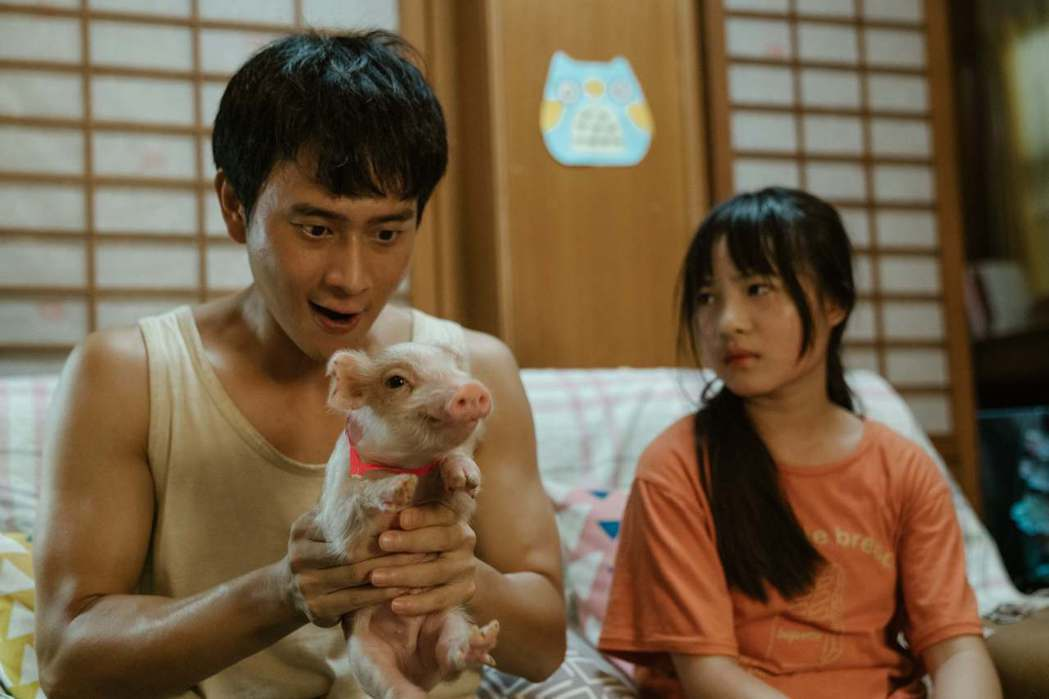 劉冠廷(左)、何潔柔與小豬「夏草」共同演出。圖/公視提供