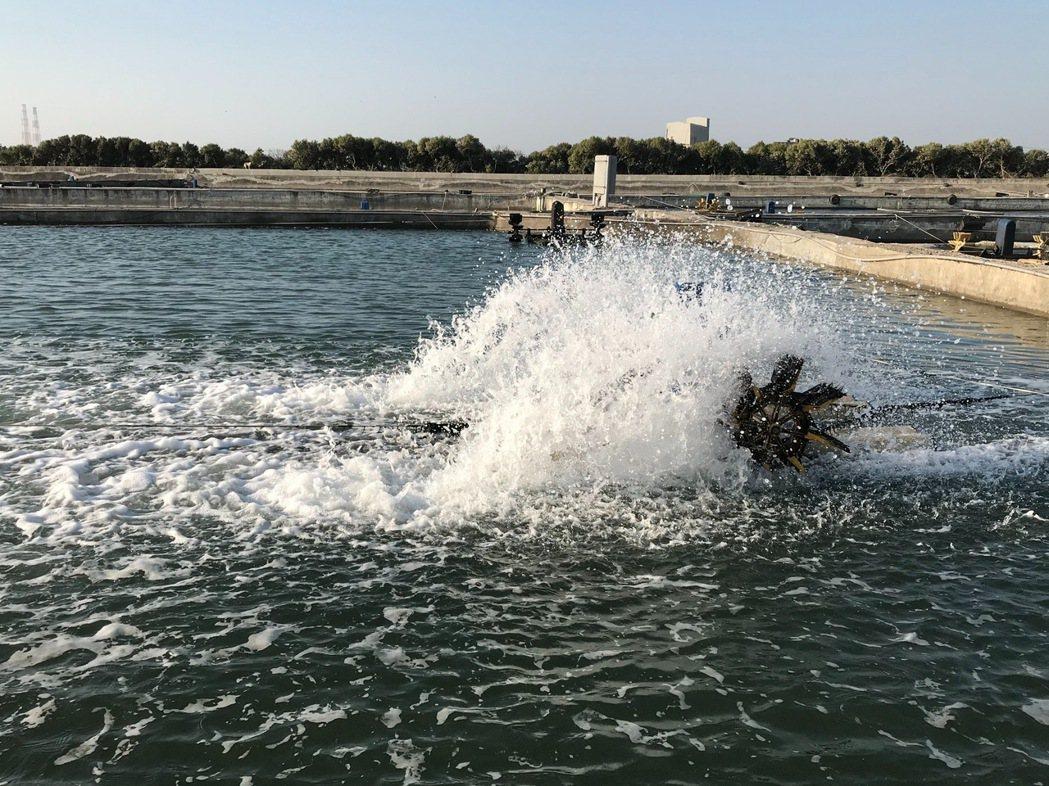 使用中油供應LNG鑽石水。 宋依靜/攝影。