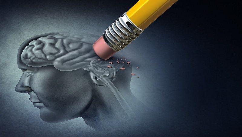 身體脂肪最多的器官竟是「大腦」!醫師教你吃8類食物防失智,阻毒素傷腦