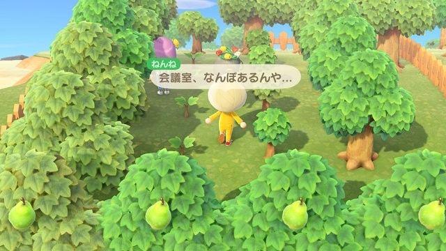 亦可以在樹林中開會 圖:Livedoor News