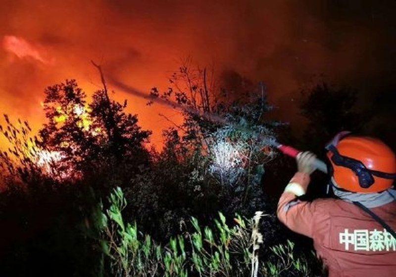 當地相關部門第一時間前往現場救火。星島網