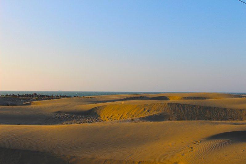 台版撒哈拉沙漠(台南七股頭額沙洲)。 記者張雅婷/攝影