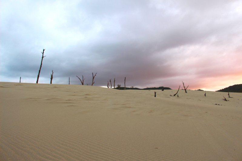 台版鳥取沙丘(屏東滿洲港仔大沙漠)。 記者張雅婷/攝影